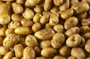 Newtec Products Potatoes